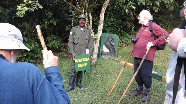 Mountain Gorillas Tracking Rules Uganda-Rwanda Congo